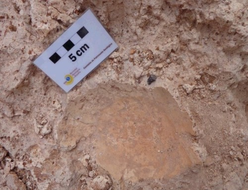 LZ01 Zona paleontológica de Órzola