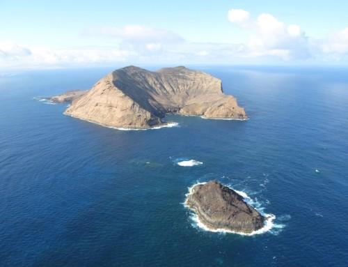 MC01 Montaña Clara-Roque del Oeste