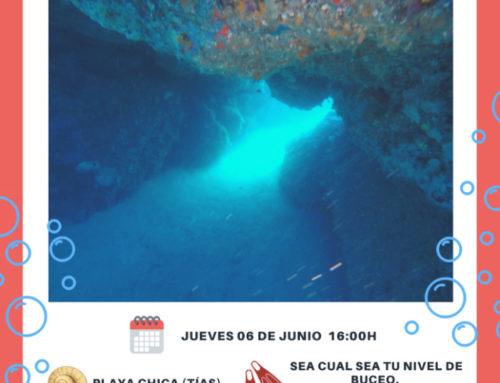 (Español) Descubre los Tesoros Submarinos